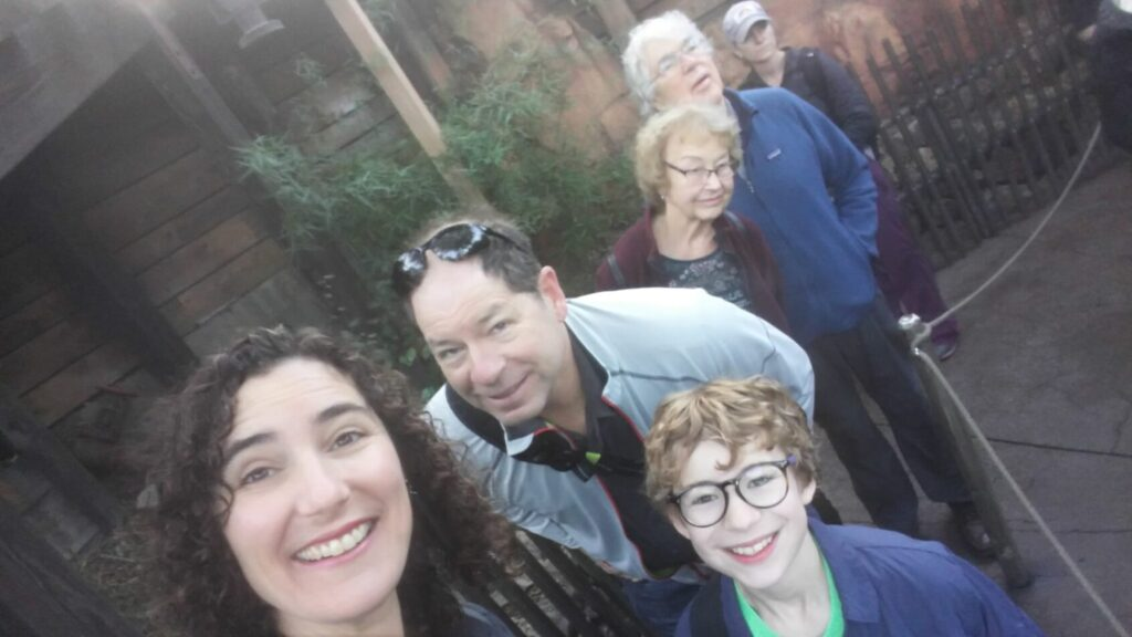 Disneyland, family travel , introvert