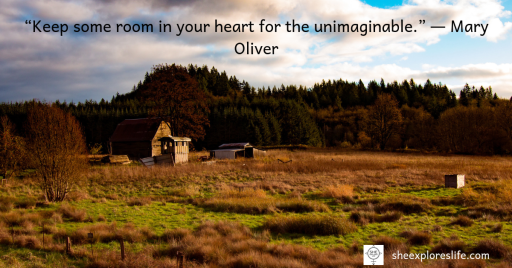 Mary Oliver, Inspirational Quotes, quotes about life
